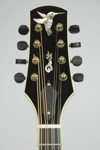 David Dart Hummingbird peghead inlay (abalone), from a Maple A5 Mandolin