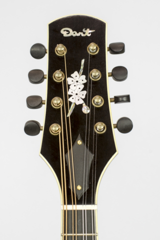 David Dart Cherry Blossom Inlay, from a Maple A5 Mandolin