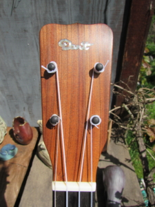 Dart Acacia Tenor Ukulele (ladder-braced)